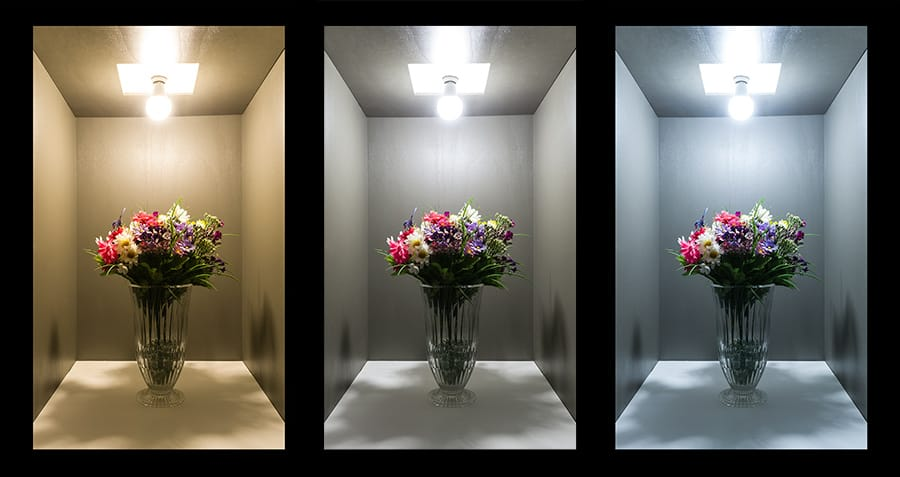 Virágcsokor megvilágítása különböző színhőmérsékletű fényekkel